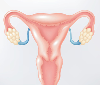 Dr. Stanley Friedell, Yes! A hysterectomy or removal of an ovary can be a minimally invasive surgery with your skilled Chicago women's health physician